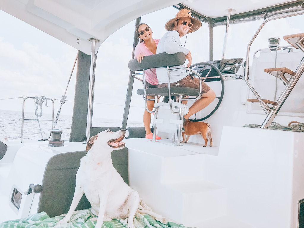 traveling with dogs by boat